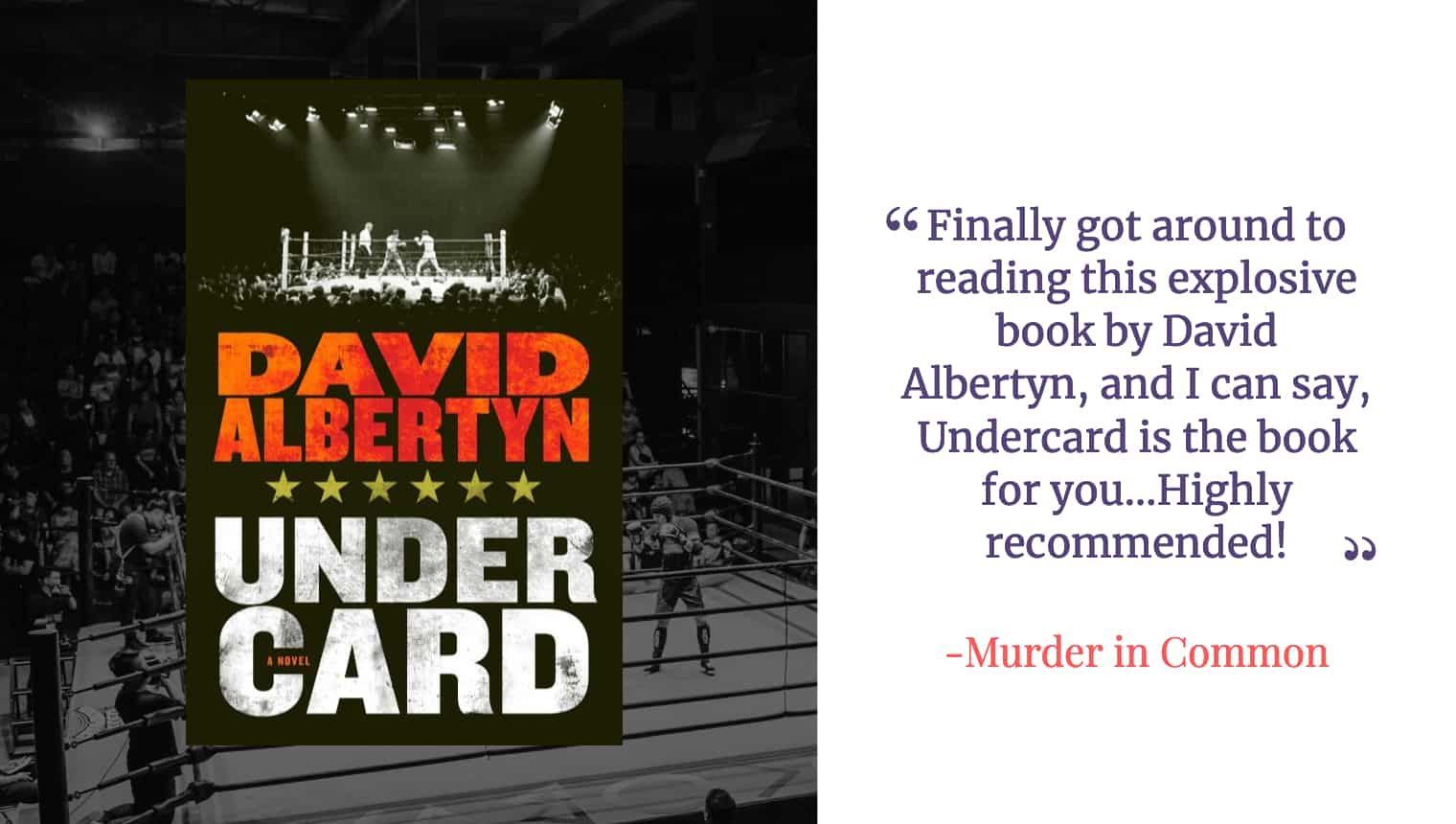 Undercard book review by Murder in Common